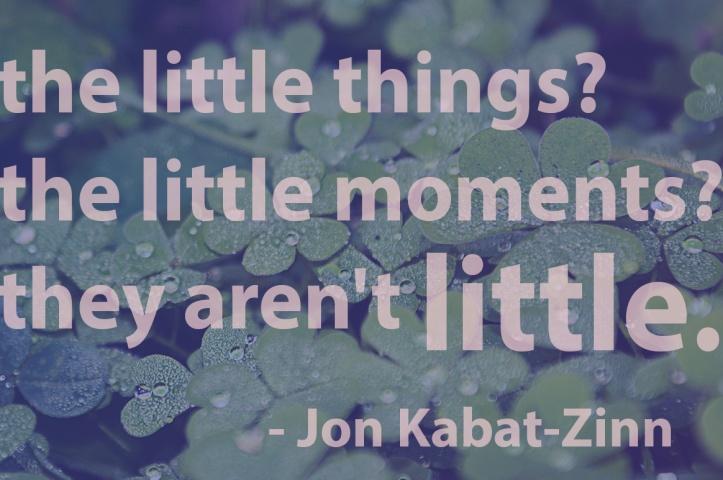 Jon Kabat Zinn quote 2