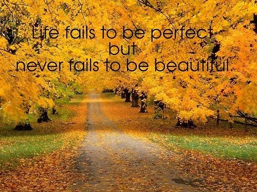 202590-life-fails-to-be-perfect-but-never-fails-to-be-beautiful